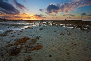 Low Tide by Ganjalvi