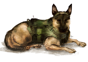 CoD: Riley by radioactivated