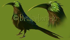 Bird of fantasy by Drakenborg