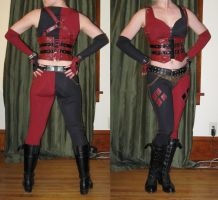 arkham city harley quinn preview by hollymessinger