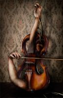 Music of the Heart by Lady-photographer