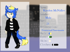 Kayden McNalley 2016 Reference Sheet by EvaEevee