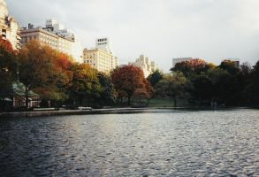 Central Park I by drumgirl