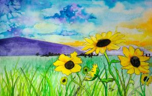 Sunset on Sunflowers by lifanonline