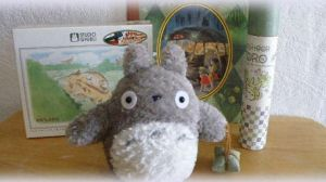 our projects_Totoro by asami-h