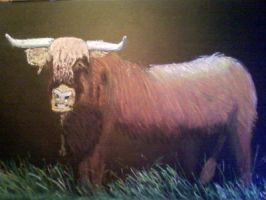ScottishHighlander,soft pastel by ljm96