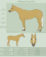 PD Wimpys Dual Chic - QH by painted-cowgirl