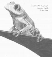 Bright-eyed Tree Frog by Shuko-chan