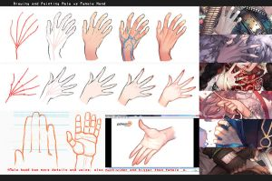 Drawing hands: male vs female by kawacy