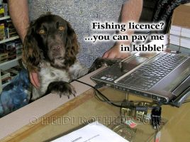 Buying A Fishing Licence by 12monthsOFwinter