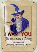 Dumbledores Army Poster by snazzie-designz