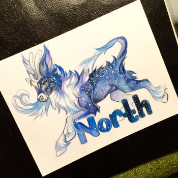 210- North by Lucky978