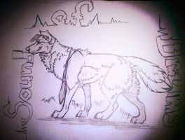 *The Sound Of Drums* by Apwolf
