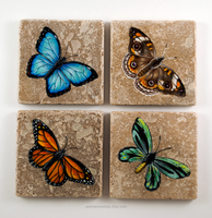 Butterfly Coasters by TumblingTortoises
