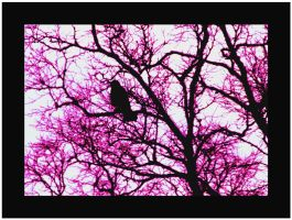 Lonely Crow Pink by auroraboralis