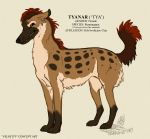 Tyanar Colour Concept by Falcolf