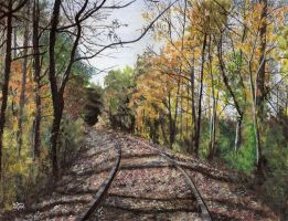 Follow the Rails by Dorothy-T-Rose