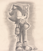 Shadow the Hedgehog by MeetJohnDoe