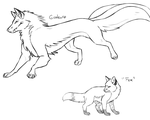 Fox Forms by CuriousInferno
