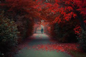 Temptation by ildiko-neer