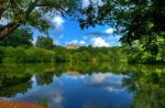 Biltmore Reflection by BobX327