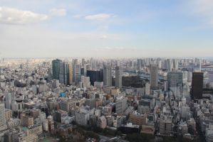 Tokyo Skyline from the Tokyo Tower by keeonso
