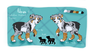 Nova Sheet by Xenophilith