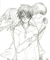 Harry Potter and the deathly hallows by Karumi-Soroku