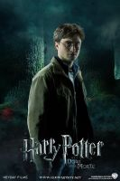 Harry Potter - Deathly Hallows Extended by HogwartSite