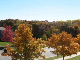 Autumn 2014 in Minnesota - 07 by CatComixzStudios