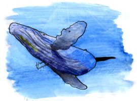 humpback watercolor by poseidonsimons