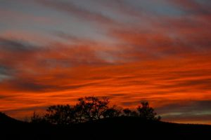 Tonto Sunset by PatGoltz