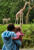at the zoo by ilovemyfriends