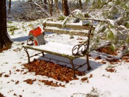 Bench in the snow by goinNsane