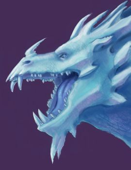 Ice Dragon by Xailai