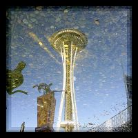 Reflection of a Needle by swashbuckler