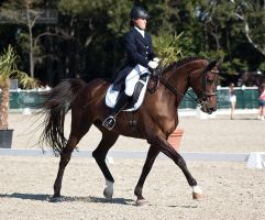 National Dressage and Jumping_48 by CalyHoney