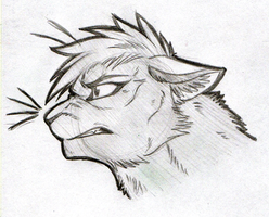 Skylar-The-Cat HEADSHOT by KasaraWolf