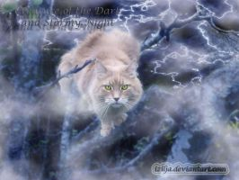 Predator of the Stormy Night by Izilja