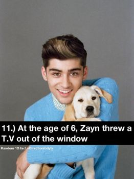 Random 1D fact 11 by DirectionForLyfe