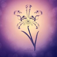 Orchid by HYDRA-Artwork