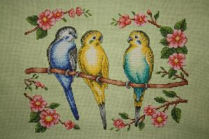 Three Budgies by StitchingDreams