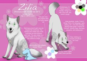 Zilia Reference sheet by Crazdude