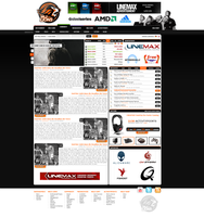 WILD LIONS v3 by chee-webdesign