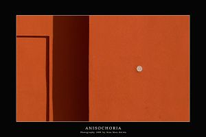 Anisochoria by DimensionSeven