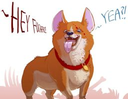 F-Face The Corgi by Stephen-0akley