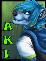 Aki Badge by AeroSocks