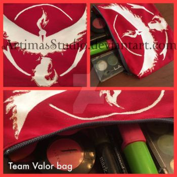 Team Valor bag by ArtimasStudio