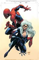 Spidey + Black Cat by JonBoy by Ross-A-Campbell