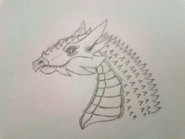 Dragon  by Outbreak2105